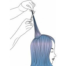 THIS IS Cut & Colour